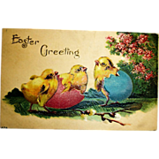 Vintage Embossed Easter Postcard - Easter Chicks Antique Post Card
