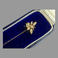 Antique c1900 15k 15ct Gold Seed Pearl Bee Stickpin in box