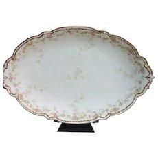 Bawo & Dotter Limoges France Platter