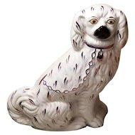 "English Staffordshire Spaniel Dog 7"" Tall"