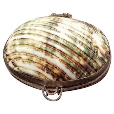 Natural Shades of Green Sea Shell Hinged Trinket Box