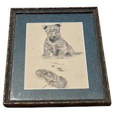 Vintage Signed & Framed Naughty Dog Terrier Sketch