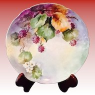 Hand Painted Heirloom Plate MZ Austria