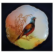 Coronet Limoges Pheasant Game Bird Plate
