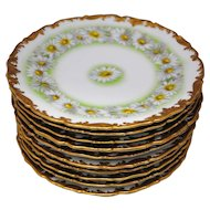 Set of 10 T&V Limoges France Daisy Chain 8 3/8 inch Salad or Dessert Plates