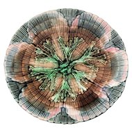 Etruscan Majolica Shell & Seaweed 6 1/8 inch Plate