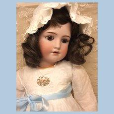 "31"" Brunette Beauty Halbig Handwerck Bisque Child Doll"