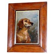 Portrait of a Hound Dog by Arthur Trevor Haddon