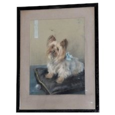 Pastel Portrait of a Yorkshire Terrier, by Maud Earl (Mrs. Maud West Watson)