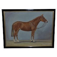 "Portrait of the Brown Riding Horse, ""Canary"""