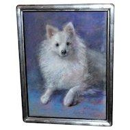 Pastel Portrait of a Pomeranian Dog by Marguerite Dielman