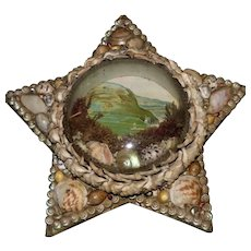 Edwardian Star-Shaped Shell-Work Diorama