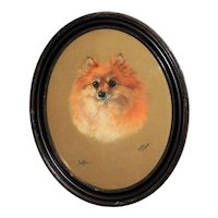 "Pastel Portrait of the Pomeranian Dog, ""Jaffa,"" by Dorothy Hallett"