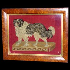 Rare Victorian 19th Century Woolwork of a Dog on Cushion