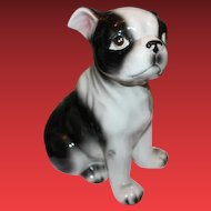 """Adorable large Dog figurine, Boston Bull Dog figurine, 8"""" tall in size, Made in Japan! Porcelain figurine. So cute!"""