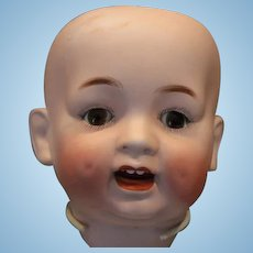 Large Japan Morimura doll head only with a hairline