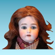 "Auburn brown human hair vintage doll wig for your dolls. 10-11"" head circumference."