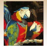 MACAWS-Reverse Painted On Glass.Artist Signed & Dated. Outstanding,Color&Detail