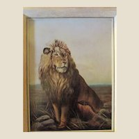 100 Year Old Oil Painting Of A Full Maned LION.Artist SIGNED, And Dated