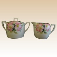 Noritake Creamer and Sugar Bowl Azalea Pattern