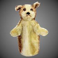 Antique Steiff Dog Hand Puppet ca1910