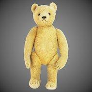 Vintage Rare Steiff Cotton Plush Bear ca1945