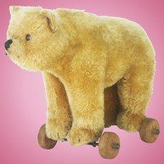 Antique Steiff Bear Pull Toy ca1920