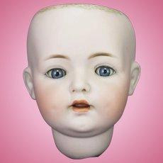 Antique German Simon & Halbig Bisque Doll Head