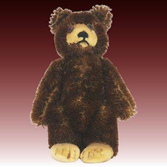 Vintage Steiff Teddy Baby Bear ca1950