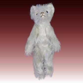 Antique Early Steiff White Mohair Teddy Bear ca1910