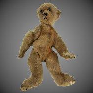 Antique Early Steiff Bear ca1908