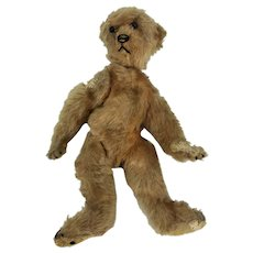 Antique Early Steiff Bear ca1908