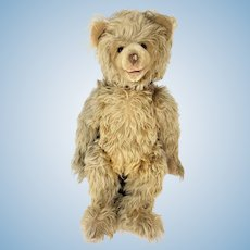 Antique Large Eduard Cramer Teddy Bear ca1920