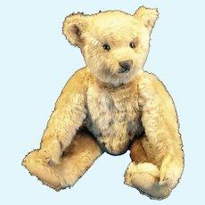 Antique German 13 inch Steiff Bear