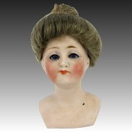 Antique German Kestner Gibson Girl Bisque shoulder Head