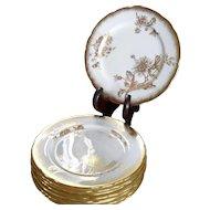 "Gorgeous Gold Encrusted Golden Chrysanthemum Hammersley #5030 Dessert Plate 8"""