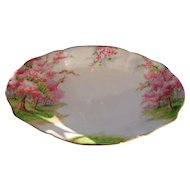 Royal Albert Pink Blossom Time Spring Green Grass Serving Dish 8 1/4""
