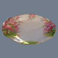 Royal Albert Pink Blossom Time Spring Green Grass Serving Dish 1936