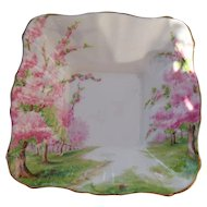 Royal Albert Pink Blossom Time Spring Green Grass Square Nut Serving Dish