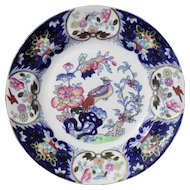 Mason's Ironstone Multicolored Cockatrice Bird and Flower Dinner Plate C902