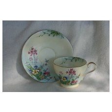 Cheerful Aynsley Garden Floral Lake Scene Teacup and Saucer