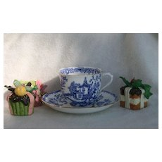 Royal Albert Blue Willow Asian Gardens Teacup and Saucer