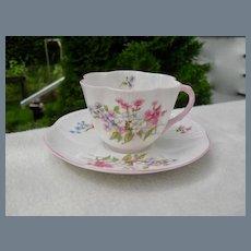 Shelley Stocks Dainty Teacup and Saucer #13428