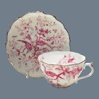 Coalport Cairo Cobalt Pink Cairo Teacup and Saucer