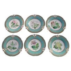 Six English Victorian Botanical Decorated Plates