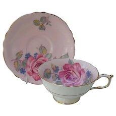 Paragon DW HP Summer Rose Deep Pink and Gold Teacup and Saucer