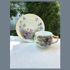 Sweet Rosenthal Handpainted Purple Violets Teacup and Saucer