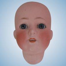 Antique Heubach Koppelsdorf Doll Head