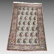 Sarough Hamadan Rug Wool Boteh Paisley  6.33' x 4.33 FT