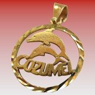 14 k YG Charm/Pendent  (Dolphin-Cozumel)